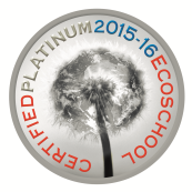 Platinum EcoSchool Seal