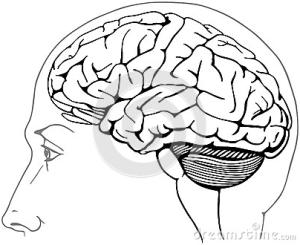 Brain Safety