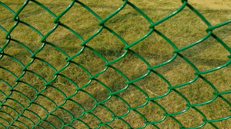 Canva - Green Cyclone Fence - Photo by Digital Buggu